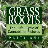 Health Science & Civics: Cannabis Hemp Life Cycle Pictorial Marijuana Education