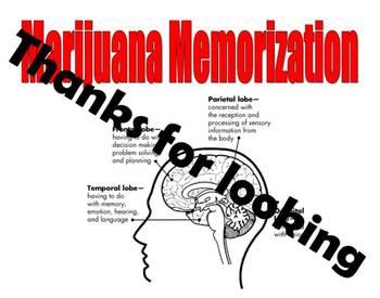 Marijuana Memorization