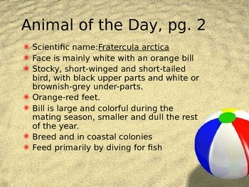 Marine Animal of the Day Warmup Activity 5