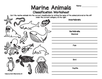 coloring pages animal classification lesson - photo#14