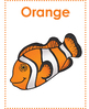 Marine Animals - Learning Colors - Classroom Posters