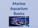 Marine Aquarium Basics Notes