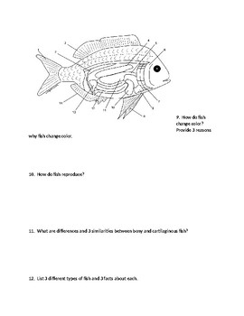 Marine Bio: Unit 2 Fish Review Guide