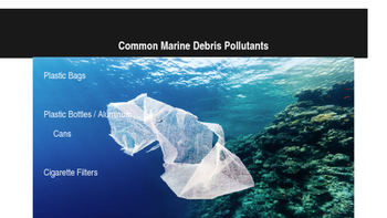 Marine Debris A brief Introduction