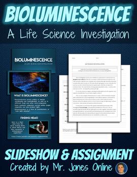 Marine Dinoflagellates & Bioluminescence Investigation Assignment