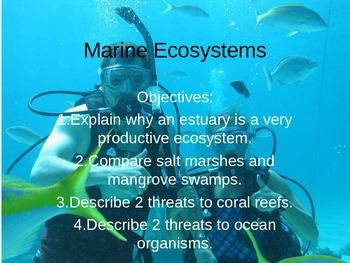 Marine Ecosystems Powerpoint
