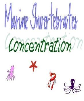 Marine Invertebrates Concentration