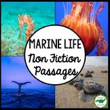 BUNDLE - Marine Life Non Fiction Passages Close Read (set of 5)