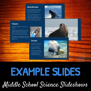 Marine Mammals: A Life Sciences Slideshow!