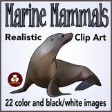 Marine (Ocean) Animal Clip Art
