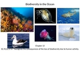 Marine Science - Biodiversity in the Ocean