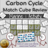Match Cube Review: Ocean Carbon Cycling w/Group Rvw PPT &