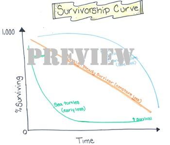 Marine Survivorship Curve