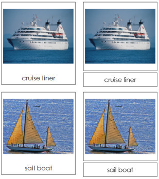 Marine Transportation: 3-Part Cards