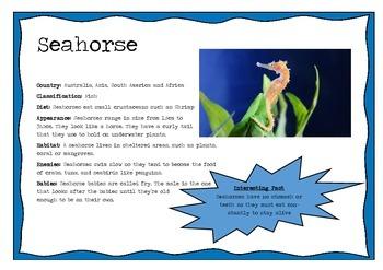 Ocean Animal Information Posters