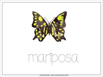 Mariposas Set de Actividades Imprimibles - Montessori Spanish