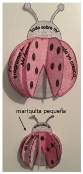 Todo sobre mi/Mariquita 3-D (pequeña)