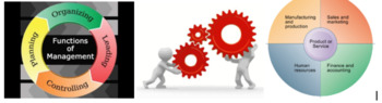 Marketing/Business: Business & Management Slides Presentation Activity