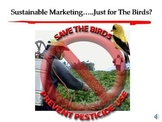 Marketing & Sustainability; Just for the Birds? Video