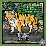 Siberian Tiger -- 10 Resources -- Coloring Pages, Reading