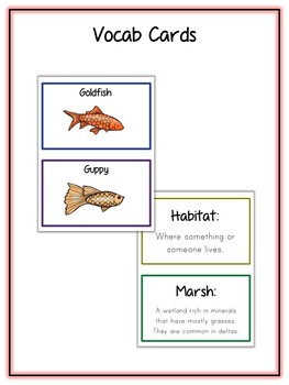 Marsh Animal Research Project - 16 Types, Vocab Cards, Packet, Book  + More!