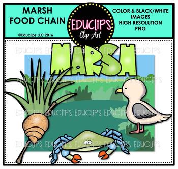 Marsh Food Chain Clip Art Mini Bundle {Educlips Clipart}