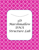 Marshmallow 3D DNA Structure LAB