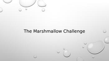 Marshmallow Challenge - Team Building Activity