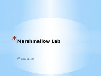 Marshmallow Lab - My Version