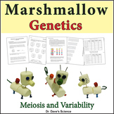 Marshmallow Meiosis and Genetic Variability