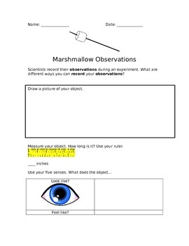 Marshmallow Observations