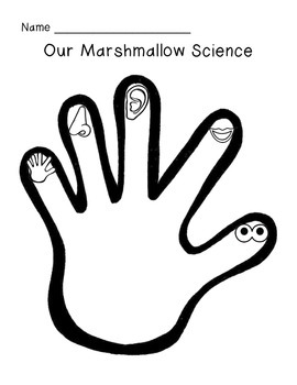 Marshmallow Science