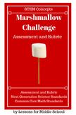 STEM-Marshmallow & Spaghetti Tower Challenge - ASSESSMENT