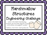 Marshmallow Structures: Engineering Challenge Project ~ Great STEM Activity!
