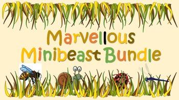 Marvellous Minibeast Literacy Bundle