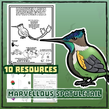 Marvellous Spatuletail -- 10 Resources -- Coloring Pages, Reading & Activities