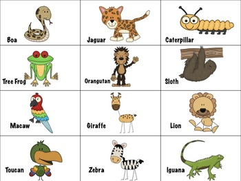 Marvelous Mammal Vocabulary Animal Sort