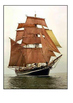 Mary Celeste Word Search