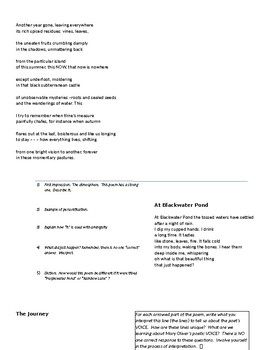 Mary Oliver/Fall Poetry study packet with poems and detailed questions/Voice