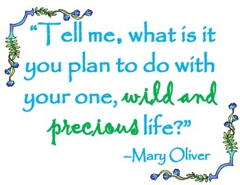 Mary Oliver Quote. Tell me poster