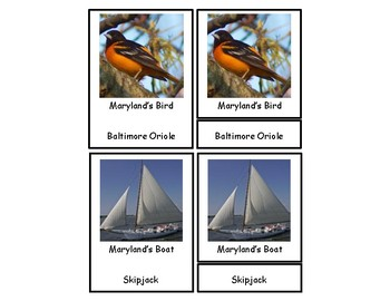 Maryland 3 Part Cards