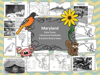 Maryland State Study & Bulletin Board Ideas