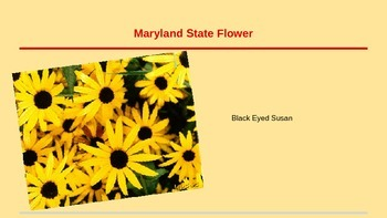 Maryland State Symbol Powerpoint