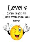 Marzano Levels of Understanding
