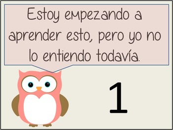 Marzano's Level of Understanding Posters (Owl Themed) with Spanish options
