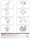 Spanish: Mascotas - Pack 1 - Actividades