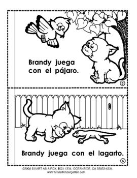 Mascotas    Pets in Spanish