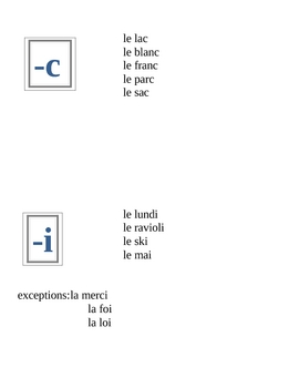 Masculine and feminine spelling rules in French