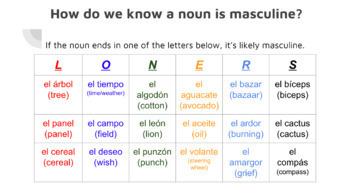 Masculine vs. Feminine Spanish Nouns