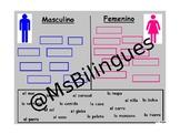 Masculino y Femenino Spanish Article Mimio Activity